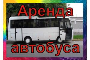 Аренда автобуса /Автобусные перевозки