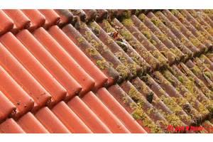 Очистка мийка даху від моху та фарбування чистка крыш шифер