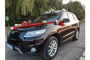 Авто на свадьбу, трансфер, личный водитель. Santa Fe (Вишня) 2013 год.