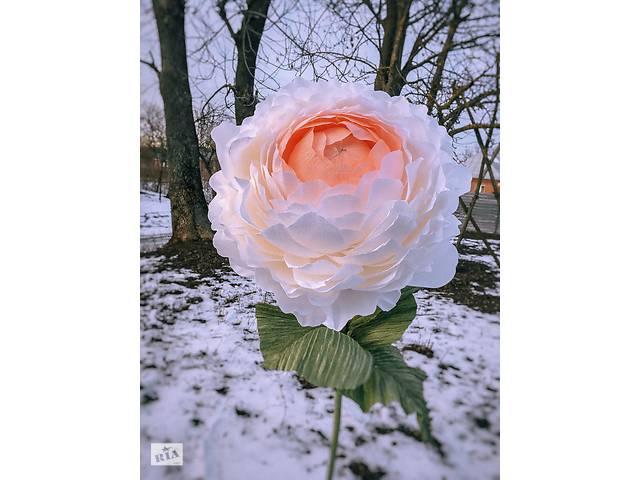 Цветы для фотозоны- объявление о продаже   в Украине