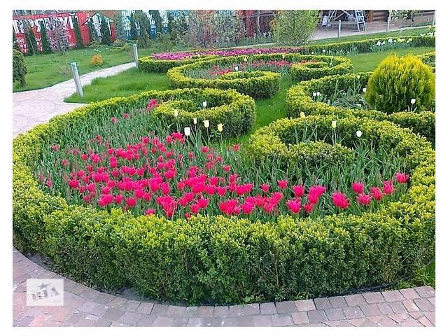 купить бу створення ландшафтного дизайну в Ровно