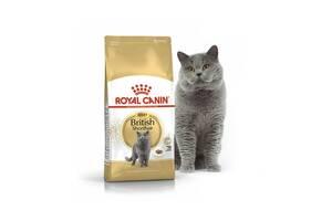 Сухой корм Royal Canin British Shorthair Adult 10кг /роял канин бритиш