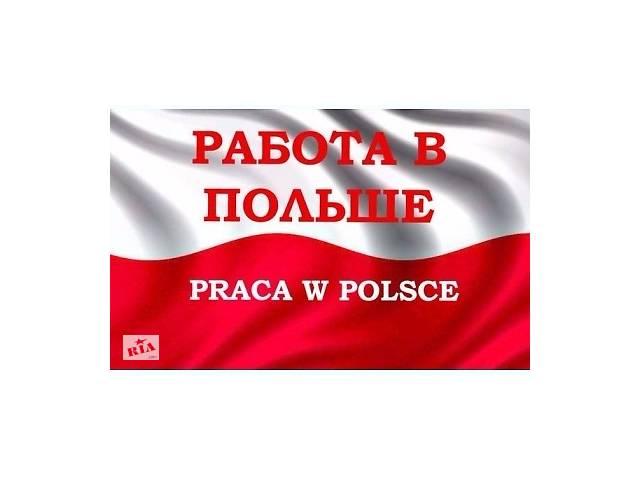 Легальная работа в Польше. Более 100 вакансий