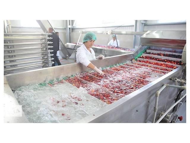 продам Оператор линиии на консервный завод выбраковка без опыта бу  в Украине