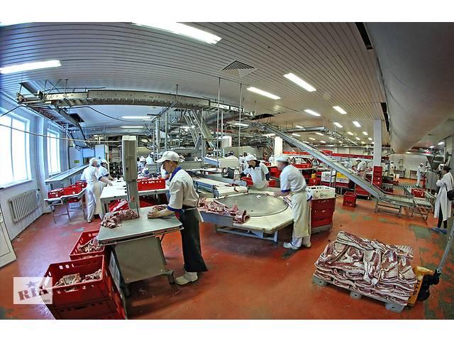 Работа в Чехии. Рабочий на мясокомбинаты. Для муж и жен. GoWork