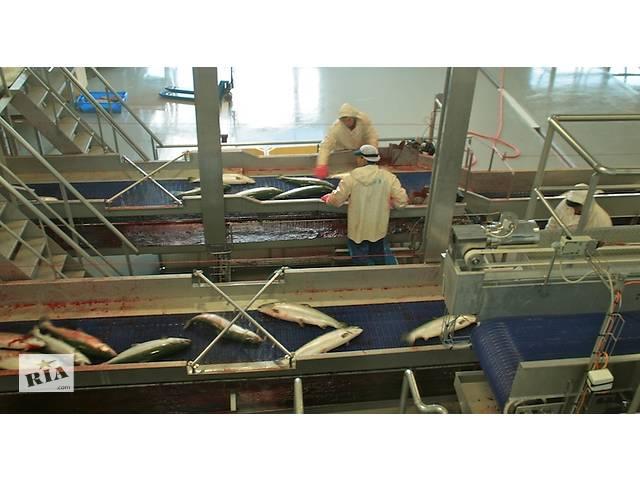Разнорабочие на завод в Норвегии- объявление о продаже   в Украине