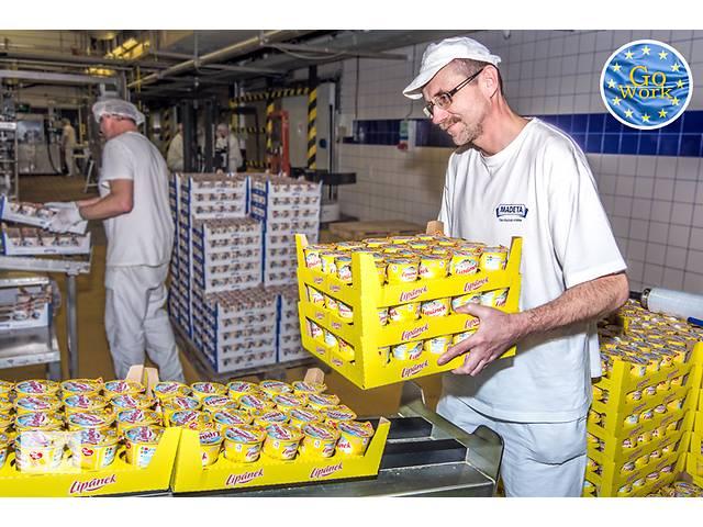 Упаковщики, сортировщики на молочную фабрику в Чехии. GoWork