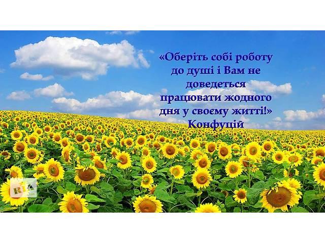купить бу Выбор профессии, профориентация в Киеве
