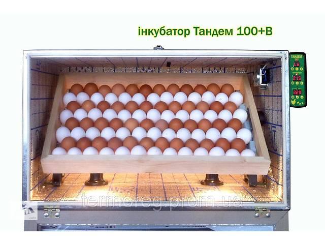 Инкубатор на 100 куриных яиц с регулировкой влажности- объявление о продаже   в Украине