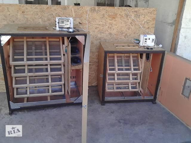 купить бу Инкубатор в Херсоне