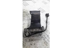 Радиатор масляный Audi S4 c4 100 034117021