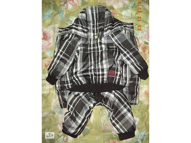 продам Комбінезон для собаки-дівчинки, комбенизон, одяг, костюм бу в Полтаві