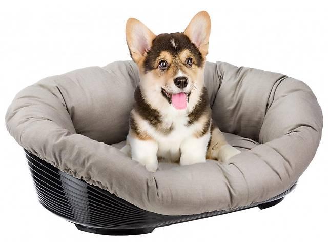 бу Пластиковый лежак для собак. Продавец: Бут Дмитрий Сергеевич в Киеве